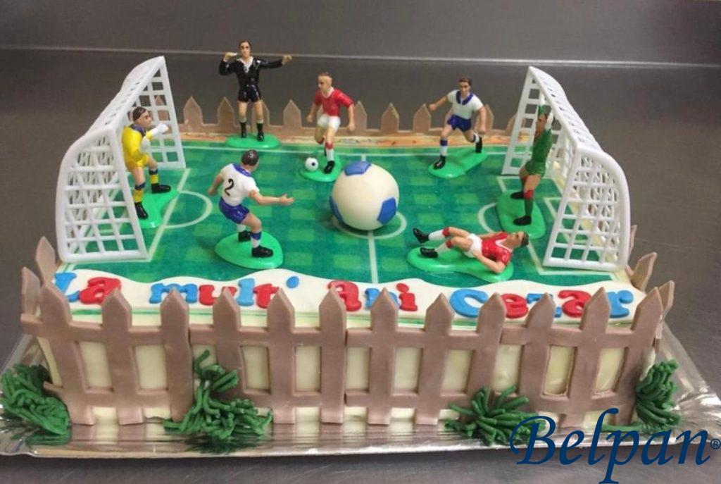 tort teren jucatori fotbal